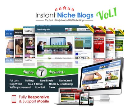 PLR-Instant-Niche-Blogs-2014
